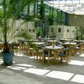 Sonnenhof Wintergarten
