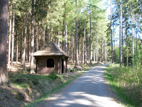 Reizvolle Wanderwege in Bad Elste